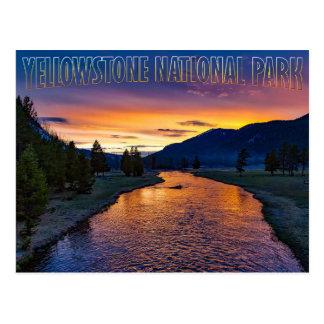 Yellowstone National Park Wyoming at Sunset Stream Postcard