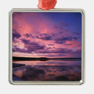 Yellowstone National Park, Wyoming. USA. Silver-Colored Square Decoration
