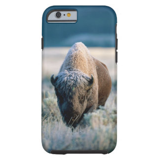 Yellowstone National Park, Wyoming, USA Tough iPhone 6 Case