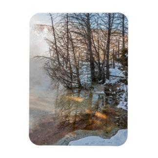Yellowstone, National Parks, Reflections, Sunlight Rectangular Photo Magnet