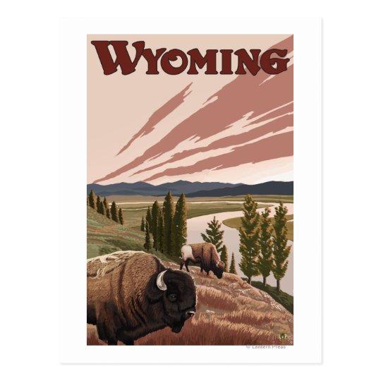 Yellowstone River Bison Vintage Travel Poster Postcard