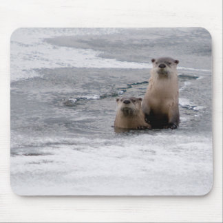 Yellowstone River Otters Mouse Mat