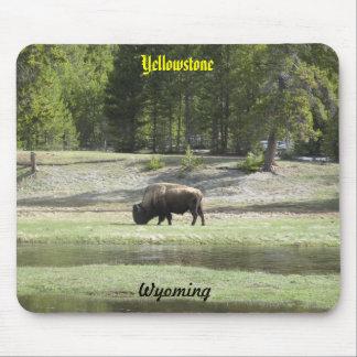Yellowstone souvenir mouse pad