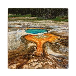 Yellowstone Thermal Pool Wood Coaster