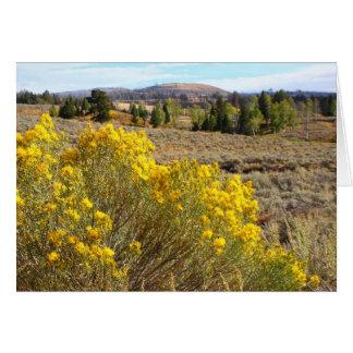 Yellowstone vista greeting card