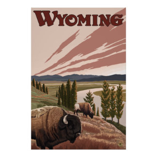 Yellowstone, Wyoming - Yellowstone River Bison Poster