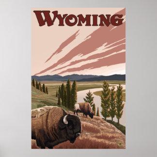 Yellowstone, Wyoming - Yellowstone River Bison Poster