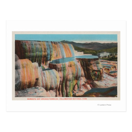 Yellowstone, WYView of Mammoth Hot Springs Postcard