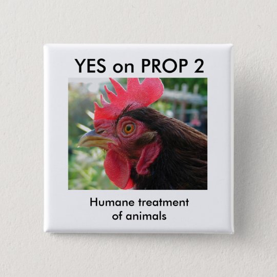 Yes on Prop 2 - Button