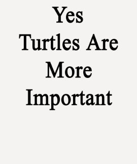 Yes Turtles Are More Important T Shirts
