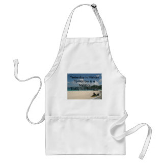 Yesterday is History Standard Apron