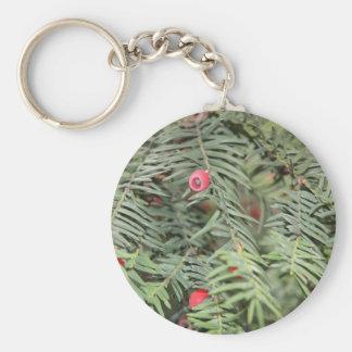 Yew tree, Milan, Italy Basic Round Button Key Ring