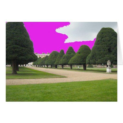 Yew Trees at Hampton Court, UK Card