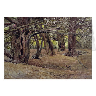 Yews in the Old Yew Wood Greeting Card