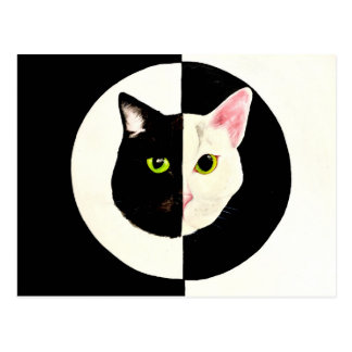 Yin and yang black and white cats faces painting postcard