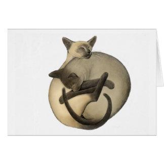Yin Yang Siamese Cats Card