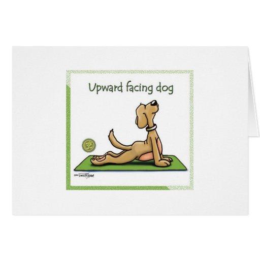 Yoga Dog - Upward Facing Dog Pose Greeting Cards