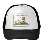 Yoga Dog - Upward Facing Dog Pose Mesh Hats