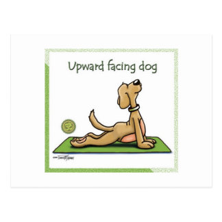 Yoga Dog - Upward Facing Dog Pose Postcard