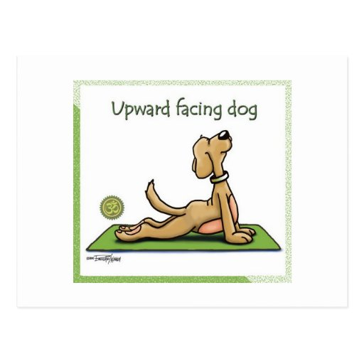 Yoga Dog - Upward Facing Dog Pose Postcards