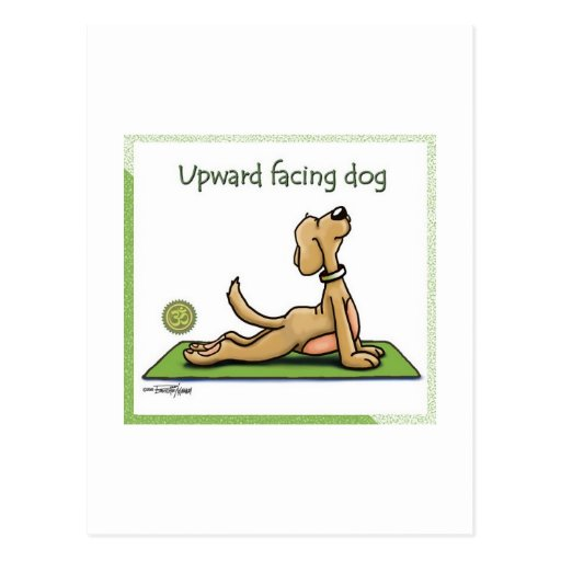 Yoga Dog - Upward Facing Dog Pose Post Card