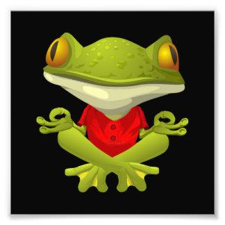 Yoga Frog Photo Art