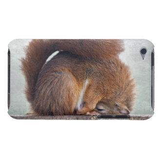 Yoga Squirrel iPod Touch Case-Mate Case