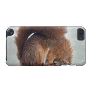 Yoga Squirrel iPod Touch Speck Case