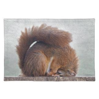 Yoga Squirrel Placemat