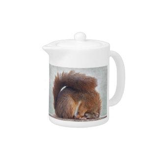 Yoga Squirrel Teapot