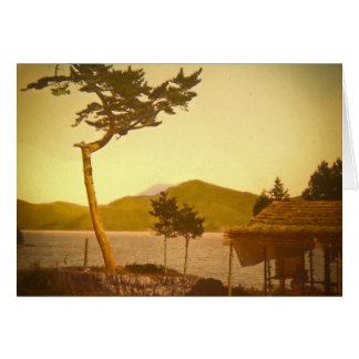 Yokohama Japan Park Vintage Mountains Greeting Cards