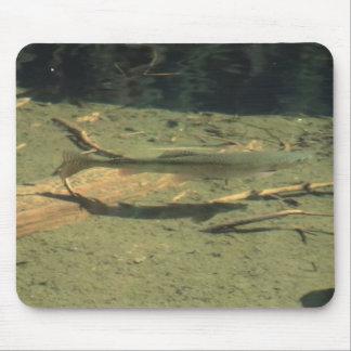 Yolly Bolly California Aquatic Plants Animal Water Mouse Pads