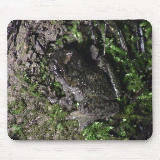 Yolly Bolly California Aquatic Plants Animal Water Mousepads