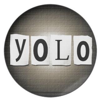YOLO concept. Plate