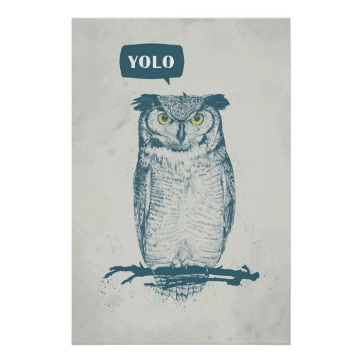 YOLO POSTERS
