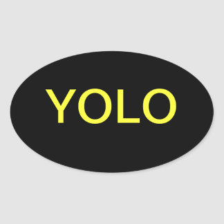 YOLO You only live once Oval Sticker