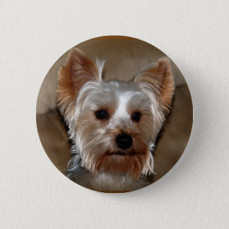 Yorkie 6 Cm Round Badge
