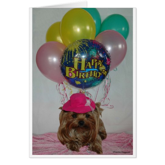 Yorkie Balloon Happy B-Day Card