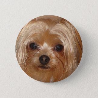 Yorkie Botton 6 Cm Round Badge