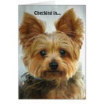 Yorkie - Checking in Card