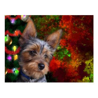 Yorkie Christmas Postcard