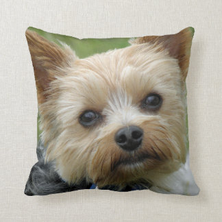 Yorkie Cushion