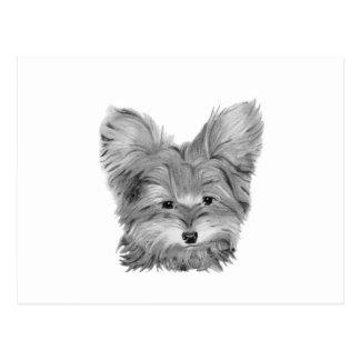 Yorkie Dog Postcard