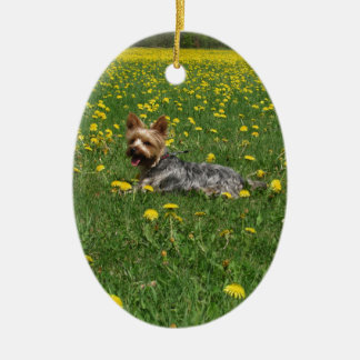 Yorkie in the spring christmas ornament