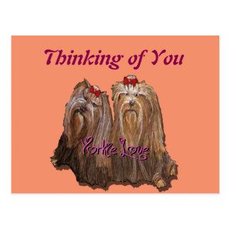 Yorkie Love - Postcard