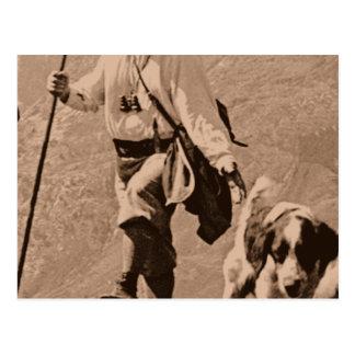 Yorkie of the mountain postcard