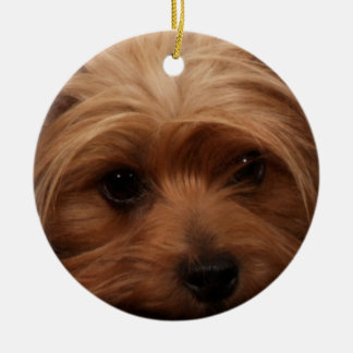 Yorkie or Your Dog Picture Christmas Ornament