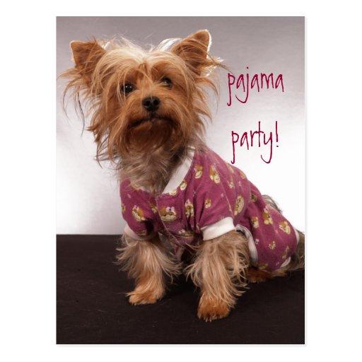 Yorkie Pajama Party Post Cards