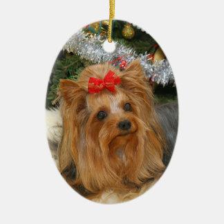 Yorkie Photo Christmas Ornament