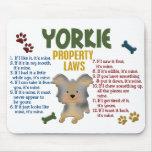 Yorkie Property Laws 4